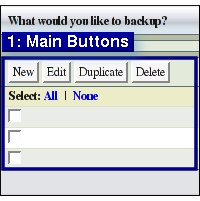 Fig. 3  New Edit Duplicate Delete Buttons