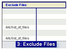 Fig. 7  Exclude Files Choice