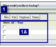 Fig. 2 A  New Edit Delete Duplicate Buttons
