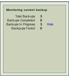 Fig. 3 Monitor Summary