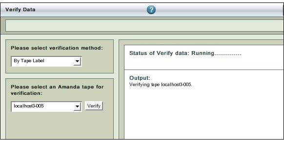 Fig. 3 Running Verification